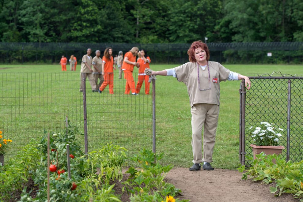 Orange is the New Black, sesong 4_4