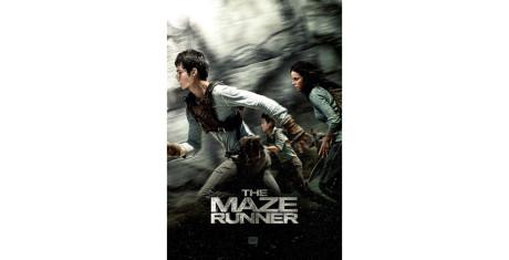The-Maze-Runner_3-990x505